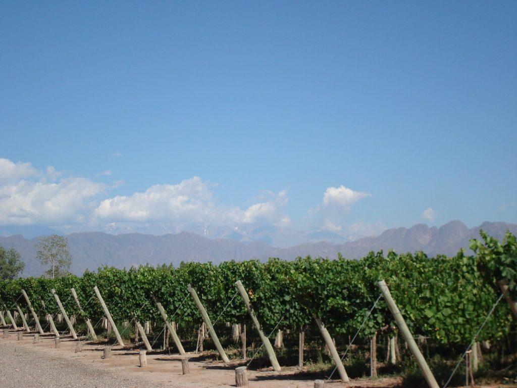 casa-glebinias-chacras-de-coria-mendoza-vineyards-travel-highlife