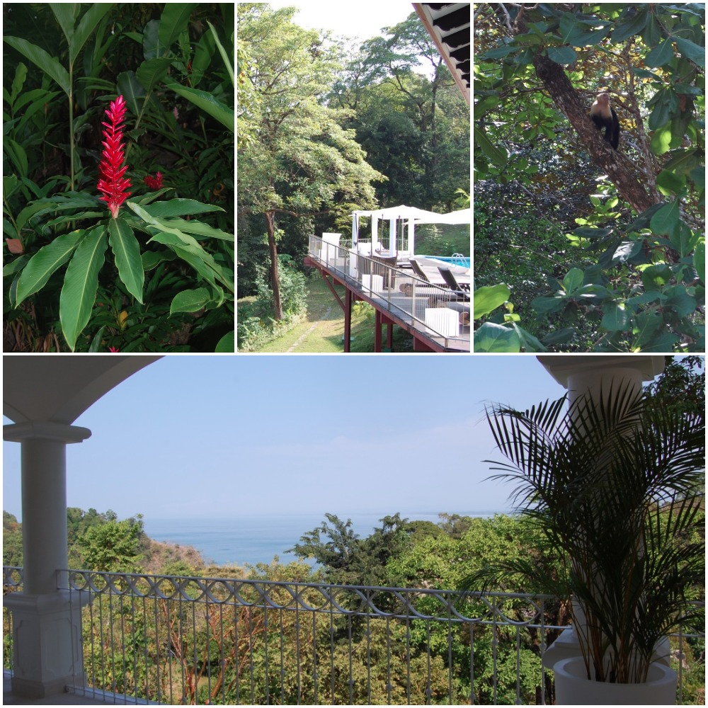 the-suu-hotel-manuel-antonio-costa-rica-hotel-grounds-travel-highlife